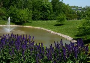St. Louis Landscape Maintenance Company Loyet Landscape